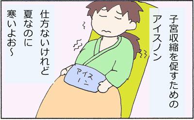 胎盤5.jpg